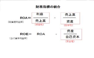 Roa_roe20090628