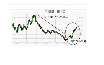 Vix20100125