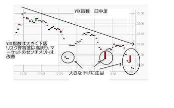 Vix20100212