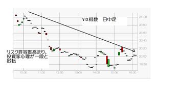 Vixb20100219