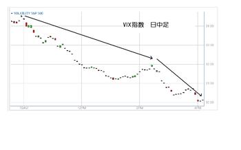 Vix20100602