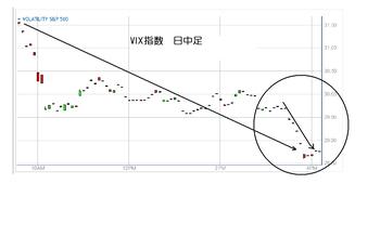 Vix20100611