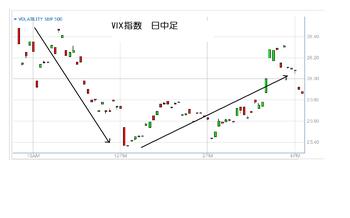 Vix20100616